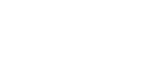 logo media force